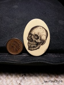 Skull scrimshaw by Jason Webb